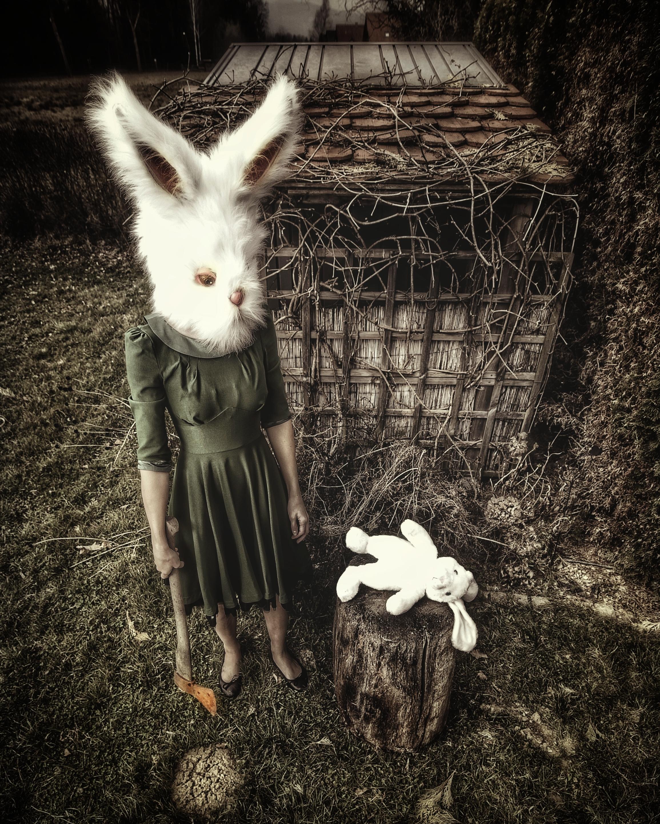 PetraH-Bunny-1