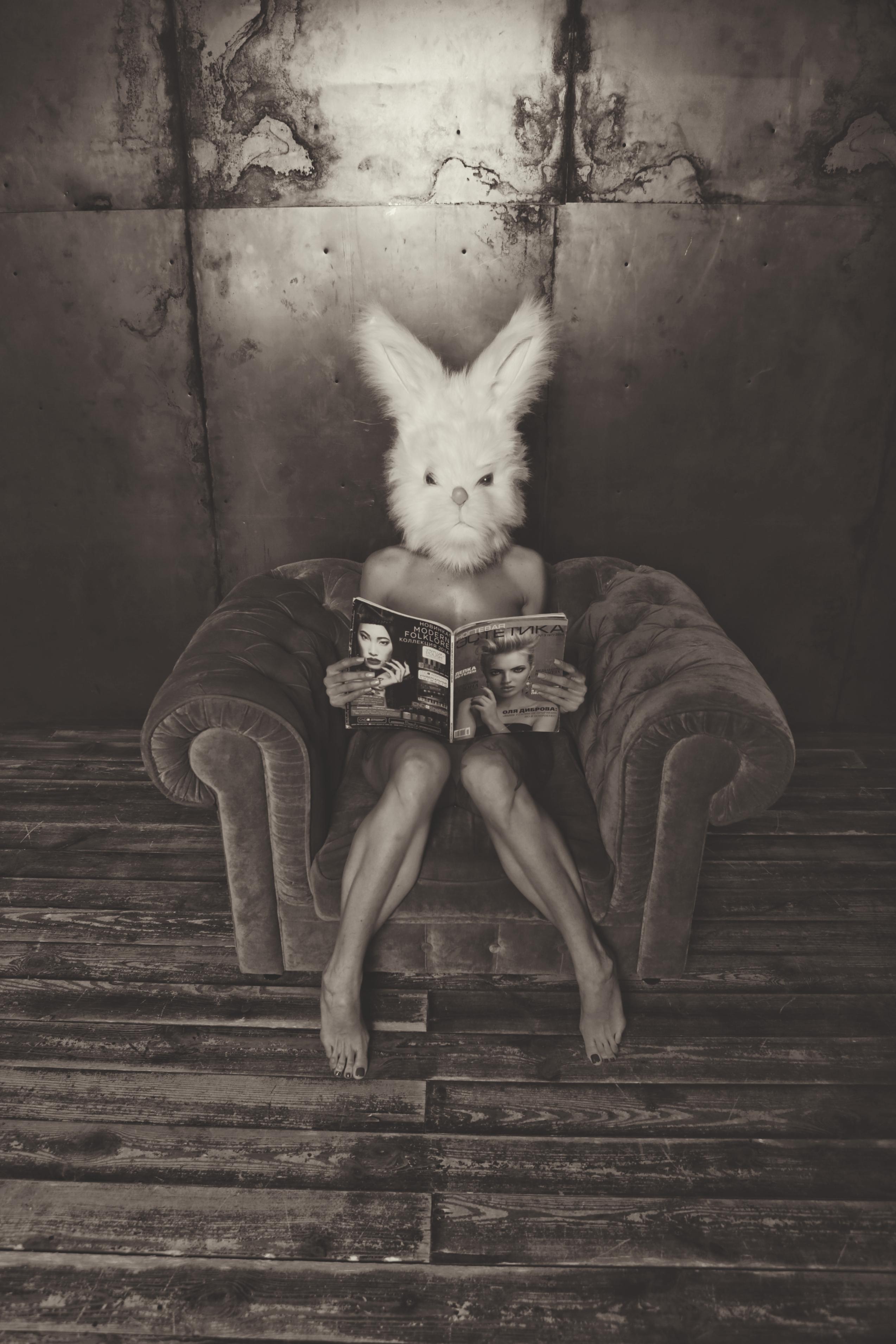 PetraH-Bunny-11