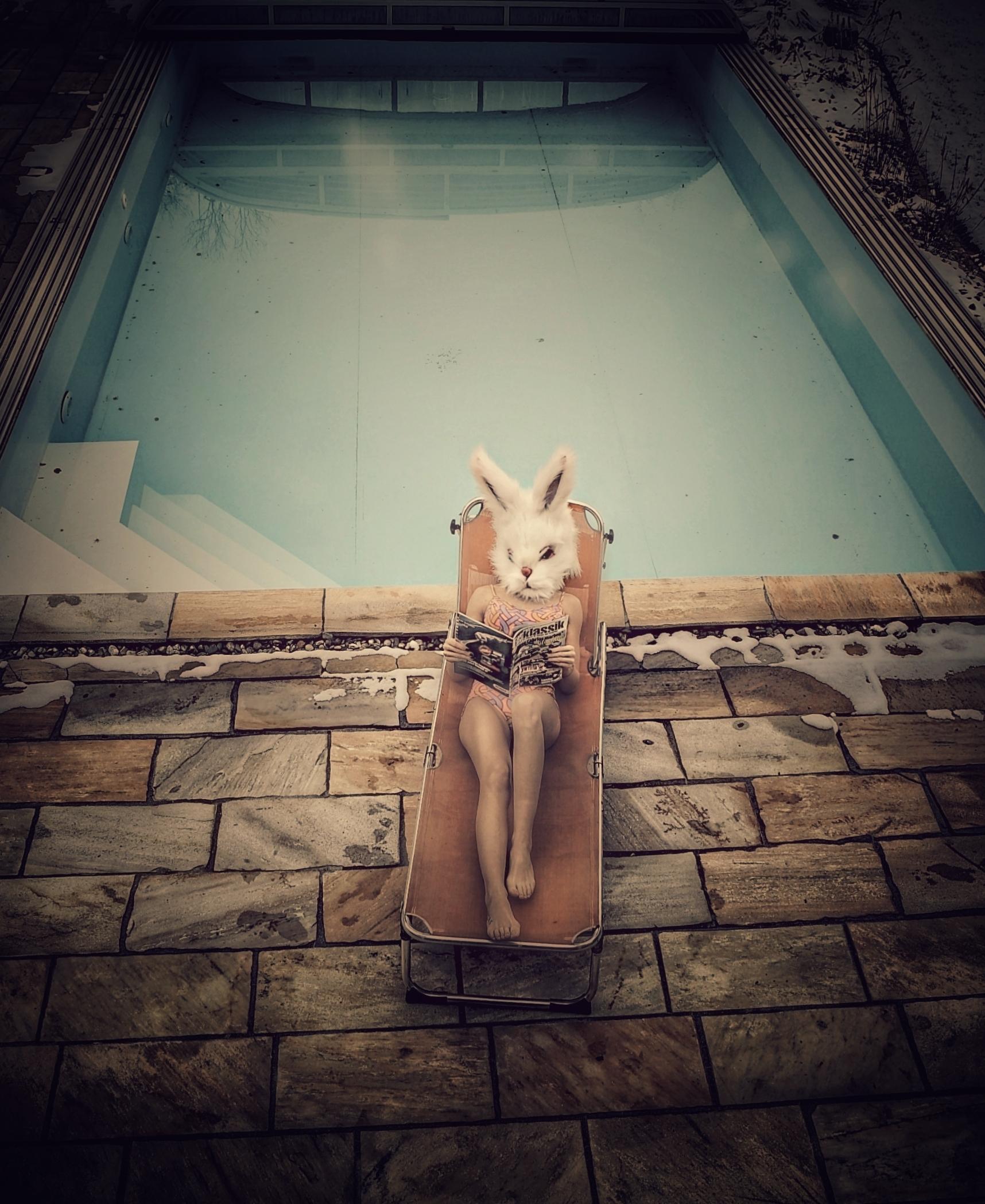 PetraH-Bunny-12
