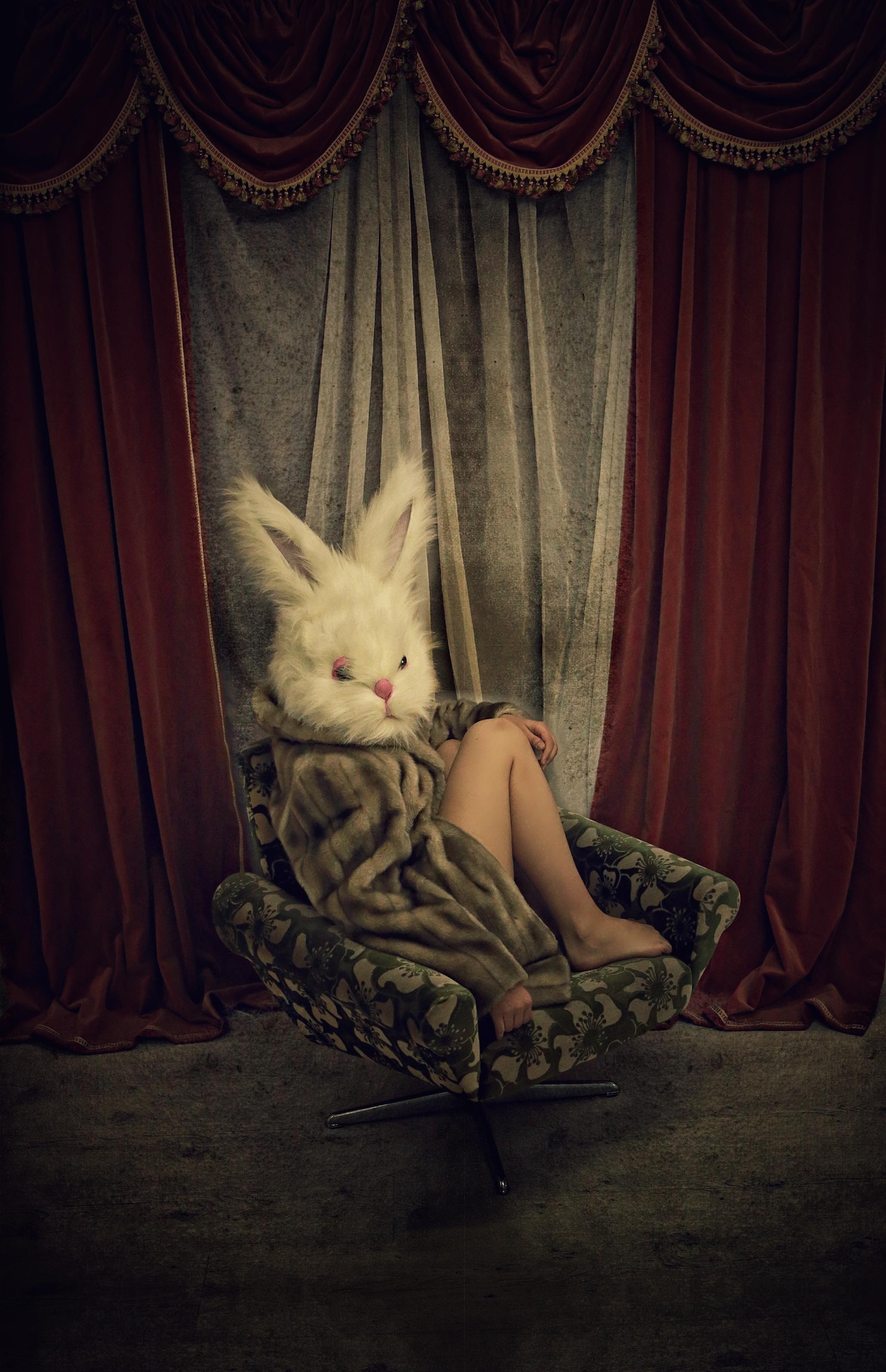 PetraH-Bunny-13