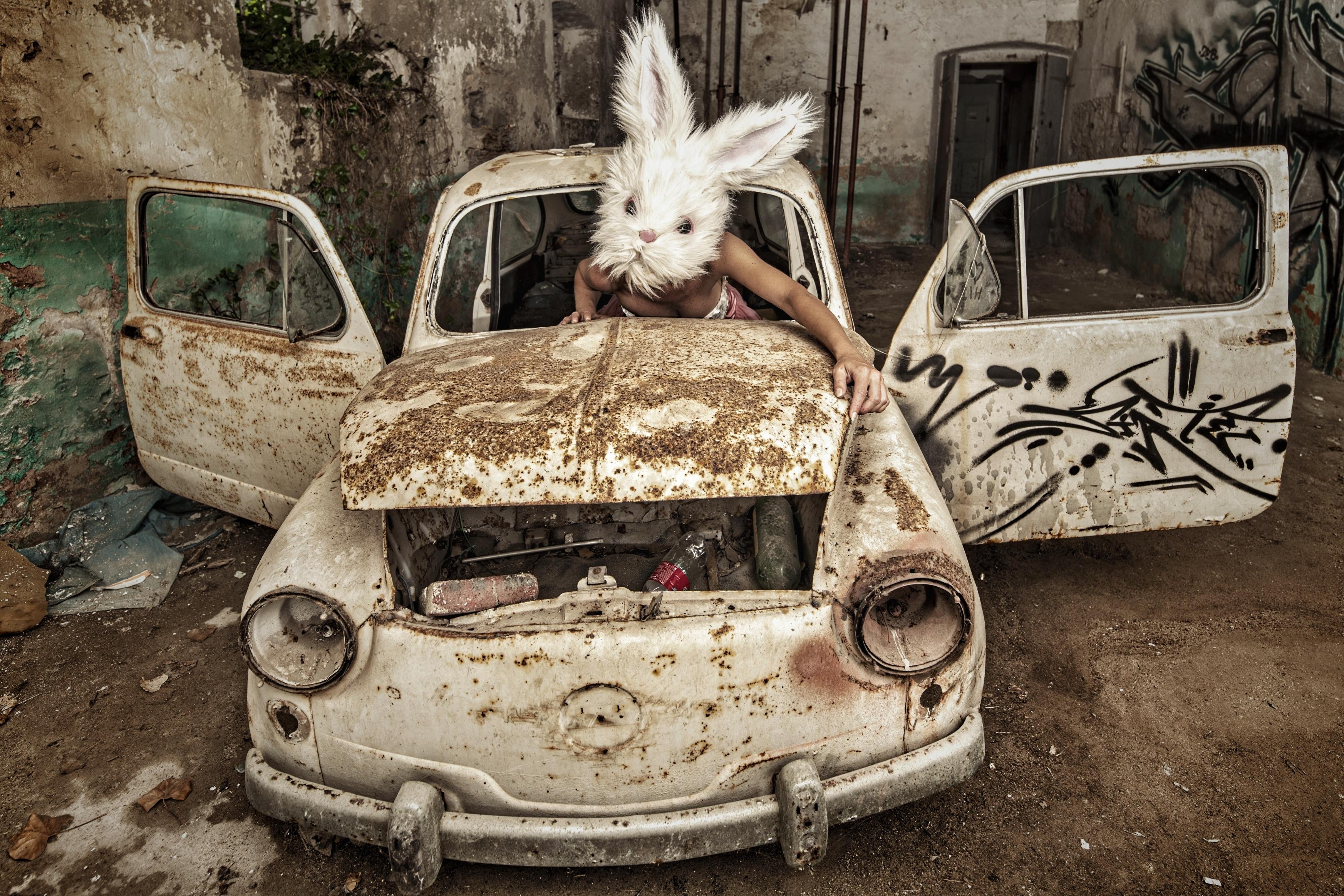 PetraH-Bunny-16