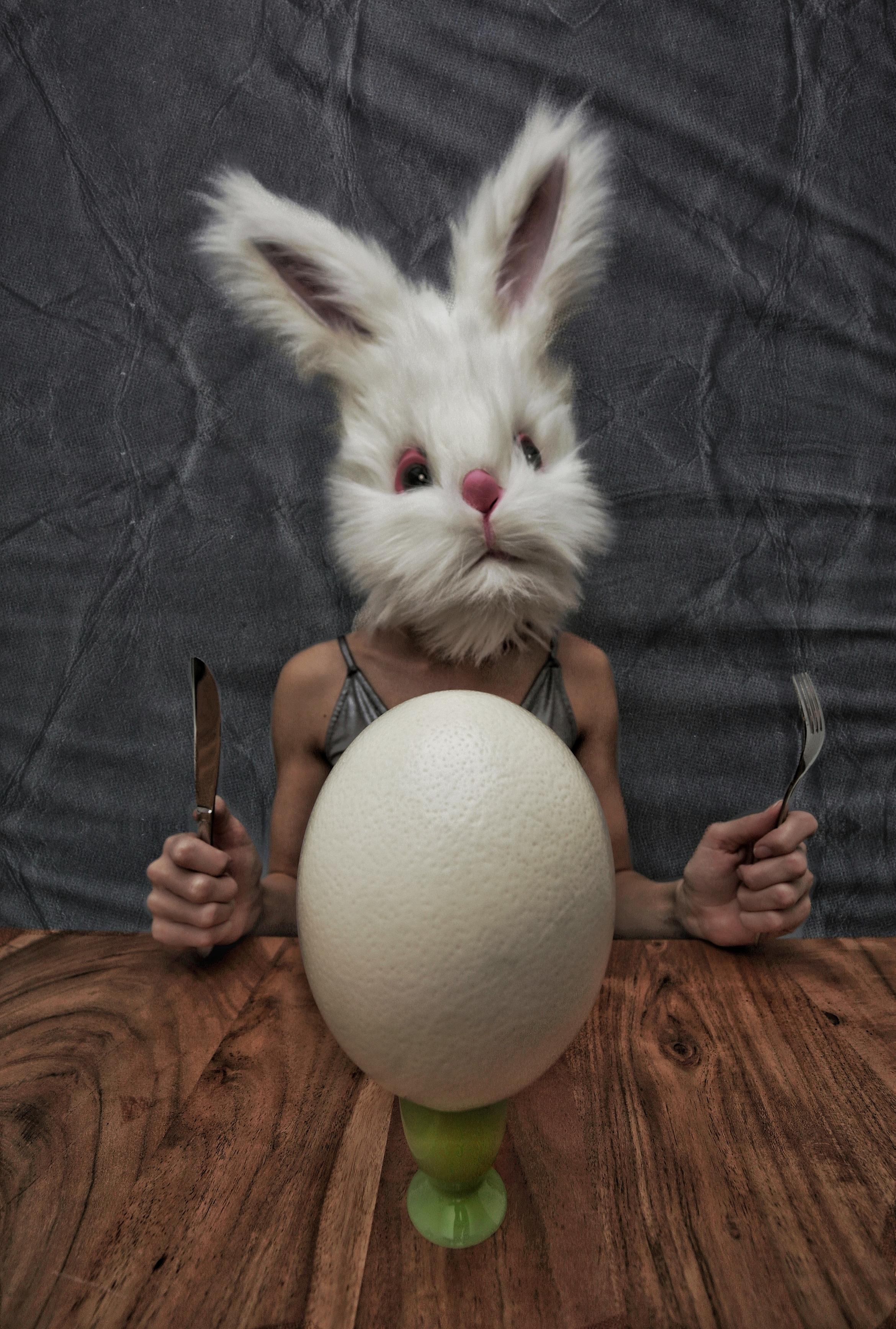PetraH-Bunny-2
