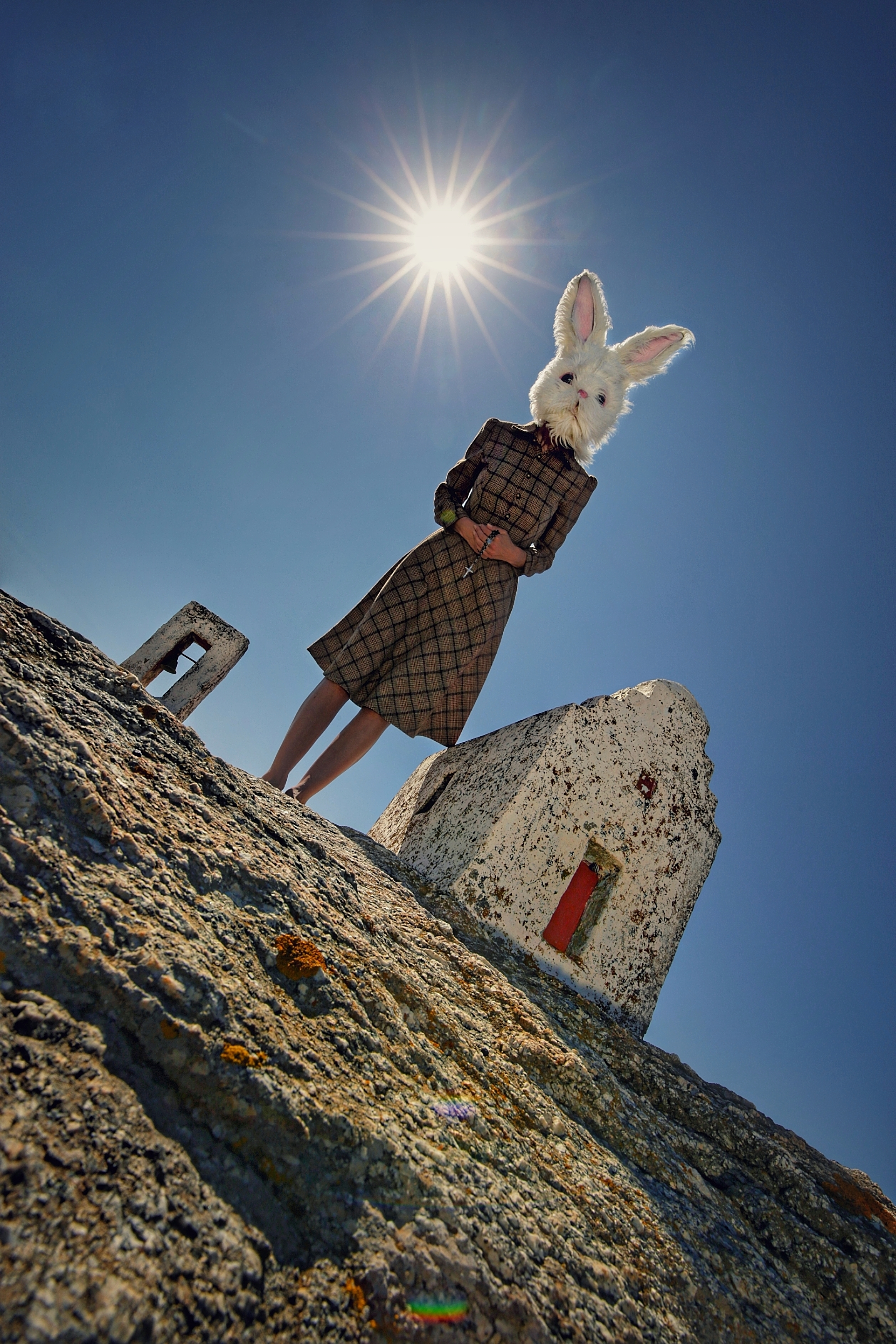 PetraH-Bunny-3
