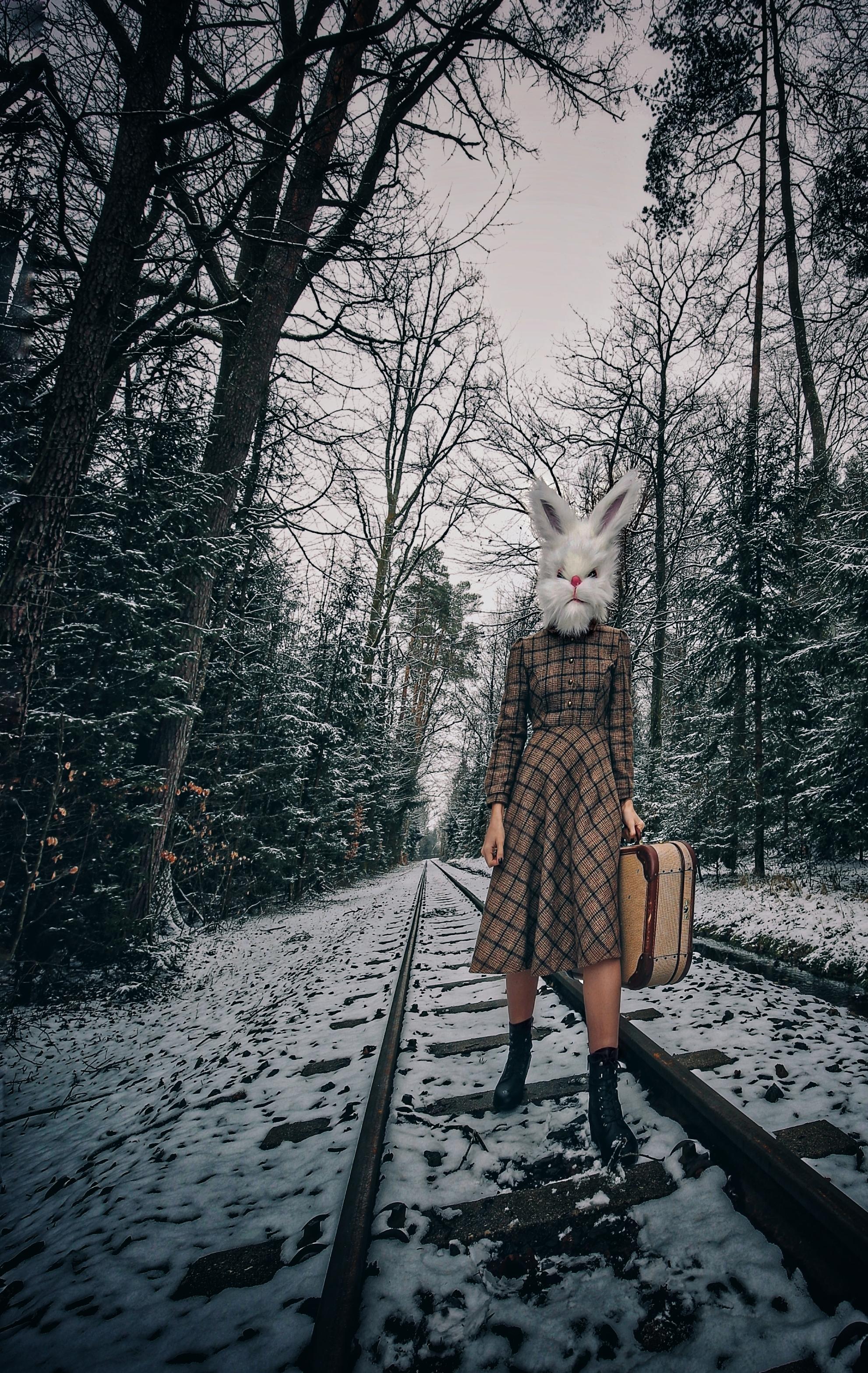 PetraH-Bunny-6
