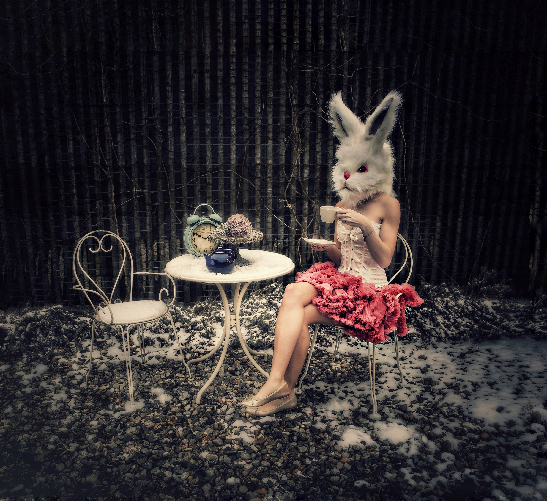 PetraH-Bunny-7