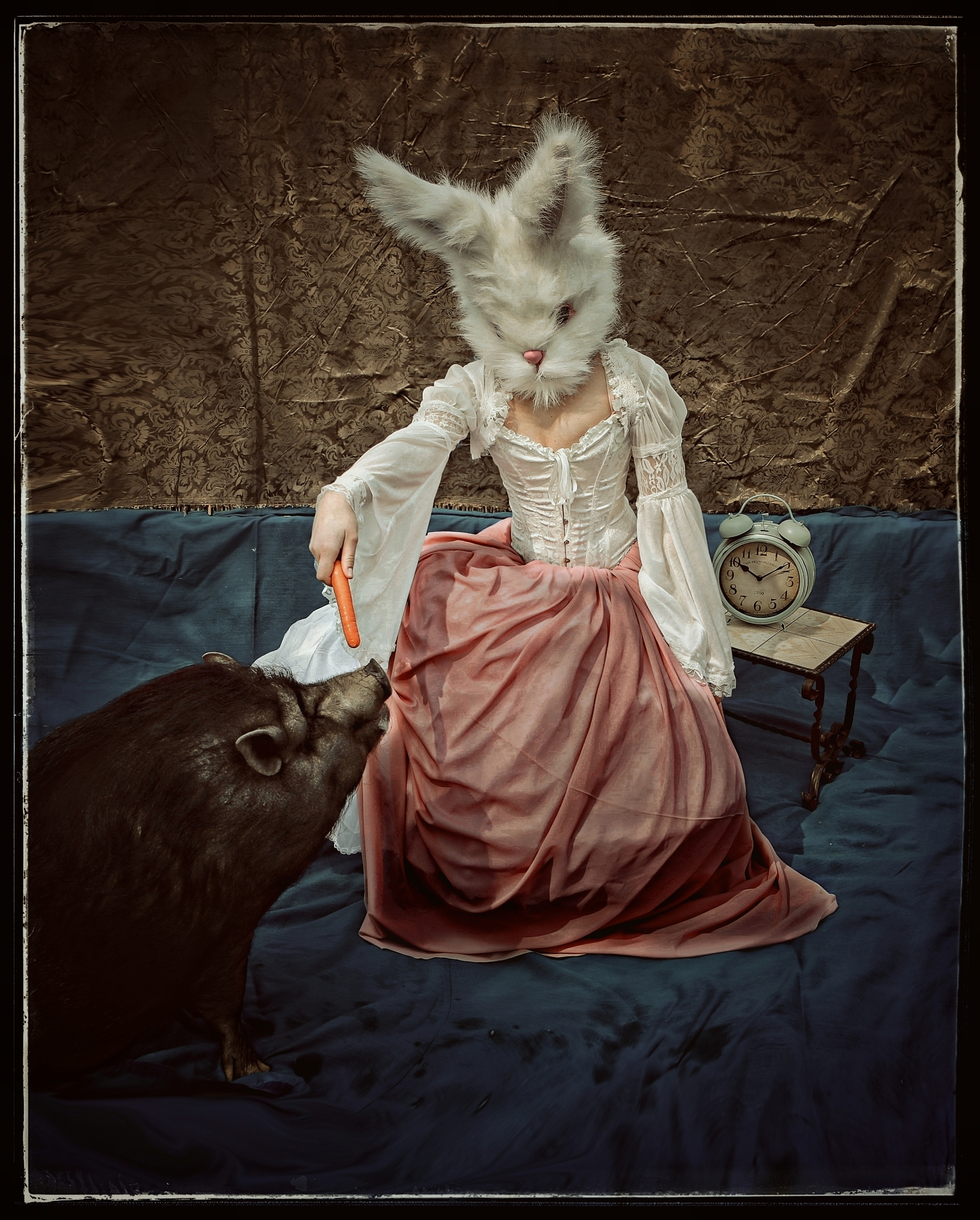 PetraH-Bunny-9